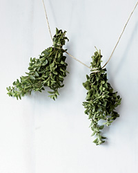 DIY Dried Herbs